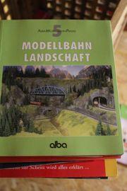 Modellbahn Landschaft AMP - Alba Modellbahn-Praxis