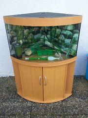 Verkaufe 190 Liter Juwel Aquarium