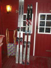 Head Blizzard Ski Rodelschlitten
