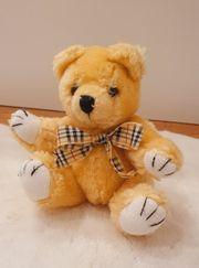 Kuscheltier Stofftier Bär Teddybär mit