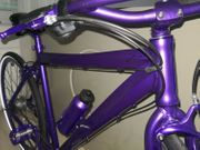 8-Gang City Bike in Deep