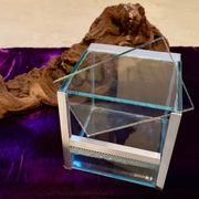 Terrarium zur Aufzucht von Vogelspinnen
