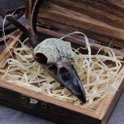 3D Goth Raven Schädel Viking