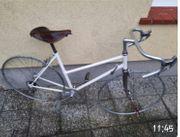 Rennrad Damen