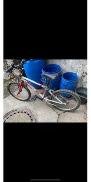 MTB Kinder Fahrrad Schnäppchen