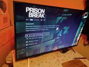 Smart TV 4k 43Zoll
