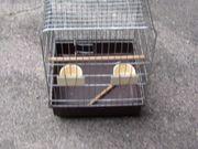 Vogelkäfig Gebraucht
