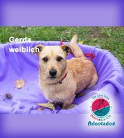 Gerda - ist fröhliches Mädchen