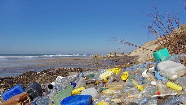 Plastikfasten - Vortrag