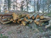 Stammholz Bauholz Brennholz