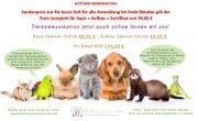 Tierkommunikation jetzt online lernen AKTIONSPREIS