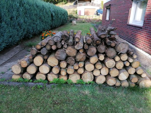 Fichtenholz Brennholz
