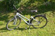 Sportlich schickes Damenrad von Pegasus