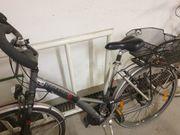 Damen Fahrrad Pegasus Solero Alu