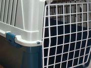 Hundebox-Katzenbox