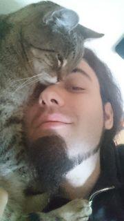 Liebevolle Betreuung Ihrer Katze n