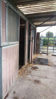 Doppelte Pferde-Außenbox
