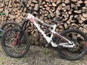 Bergamont Tyro Kinder-Downhillbike
