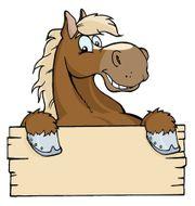 Suche Pferdebox Stallplatz Stalltrakt zur