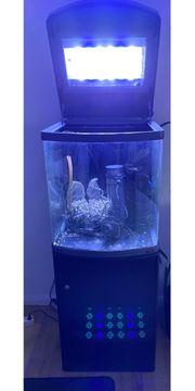 Meerwasser- Aquarium Sera Marin LED