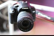 Canon EOS 500D Sigma 18-200