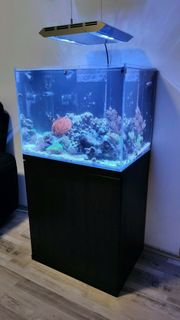 Meerwasseraquarium Komplett 60x45x45