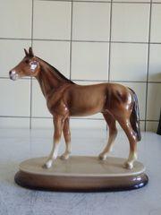 Schönes makelloses porzellan pferd zu