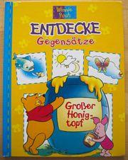 Winnie Puuh Entdecke Gegensätze Kinderbuch