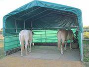 ANGEBOT Pferde-Stall-Unterstand