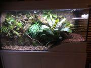 Alu Terrarium Aquarium für Reptilien