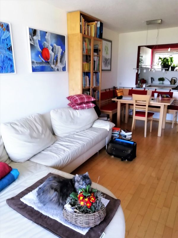 Neuwertige 2-Zimmerwohnung mit Balkon und