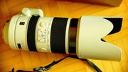 Sony Alpha 70-400 mm F4