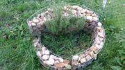 Kräuterschnecke Spirale Gabionenschnecke incl schöner