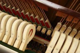 Tasteninstrumente - Nemetschke Piano 137cm