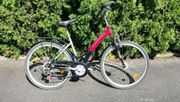 Fahrrad 28 Zoll Prophete ALU-KONSUL