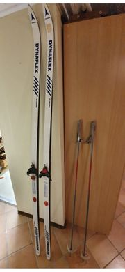 Ski mit Stöcken