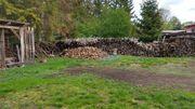 Feuerholz zu verschenken in Werchau