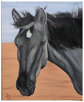 Zubehör Reit-/Pferdesport - handgefertigtes individuelles Zubehör
