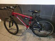 Herren-Mountain-Bike Steppenwolf