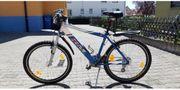MTB Swissmade - RM Bike A2601