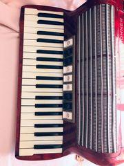 Akkordeon Tango II M
