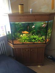 Aquarium mp 350l