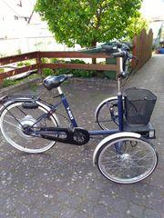 Hoening E-Bike T-Bike Dreirad für