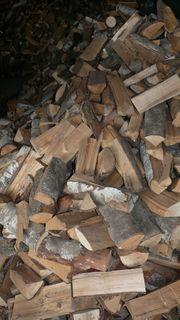 Brennholz Birke als Scheitholz Ofenholz