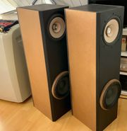 Lautsprecher Boxen Visaton Solo 100