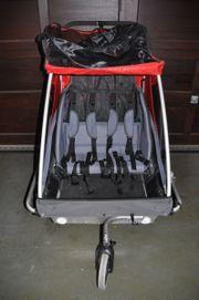 Fahrrad Anhänger für 2 Kinder
