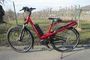 E-Bike Homage Riese Müller