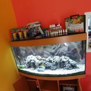 240 Liter Aquarium Juwel mit
