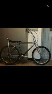 Stylisches Fahrrad Rad-Bonanza