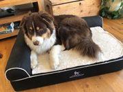 Orthopädisches Hundebett Knuffelwuff Arizona 100x70cm